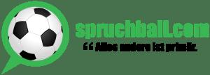 Das Logo der Website spruchball.com