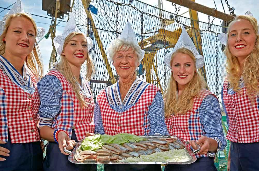 Scottish summer herring ticks