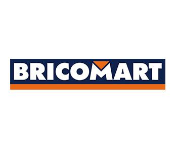 Logo - Proyectos - Bricomart