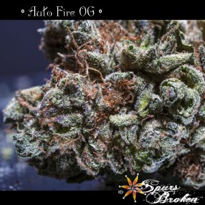 Auto Fire - Cannabis Macro Photography by Spurs Broken (Robert R. Sanders)