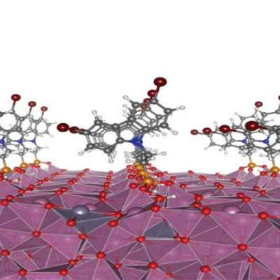 Molecular coating enhances organic solar cells