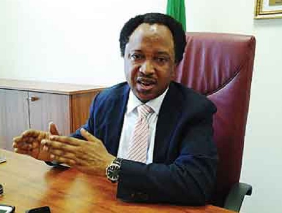 If i contest and become the governor of Kaduna State, I will open the government house to the masses, says Sen Sani.
