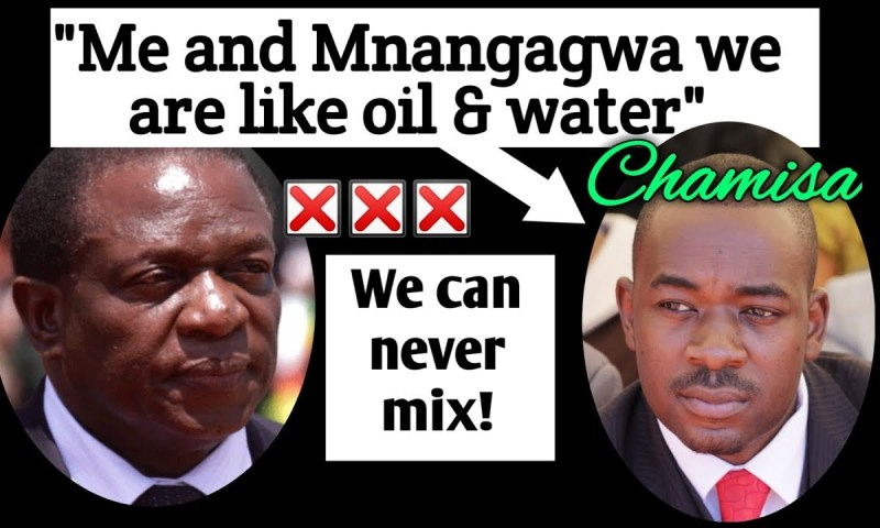 Mnangagwa, Chamisa Head For Showdown As Opposition Insist They Won Presidency!