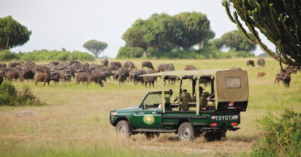 An American Tourist Kidnapped In Queen Elizabeth National Park, Kidnappers Asks For USD500,000 Ransom!