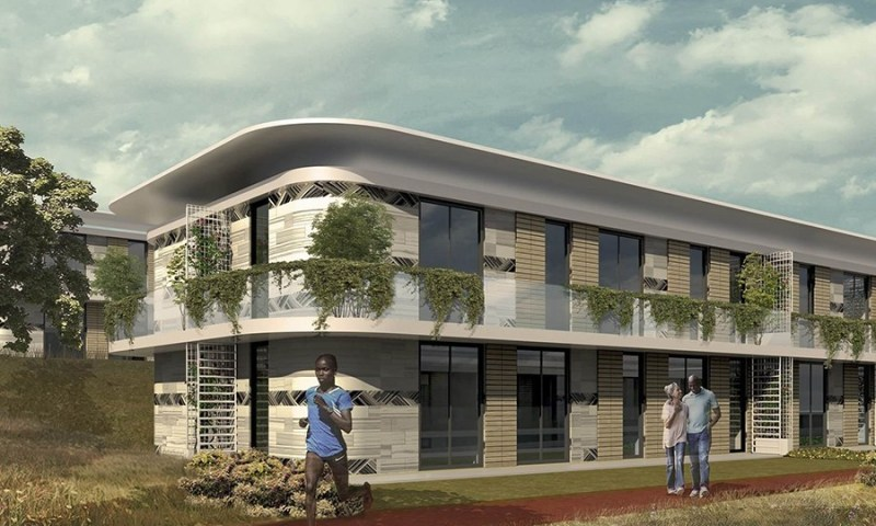 Controversy As Chinese Firm Grabs Lubowa Hosp. Deal From Roko Construction