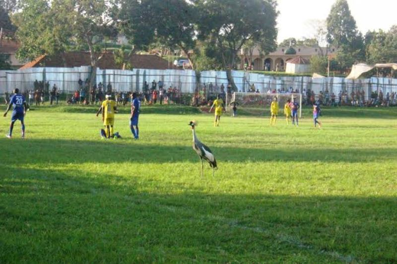 Luzira Prions grounds in sorry state, players share it with wildlife