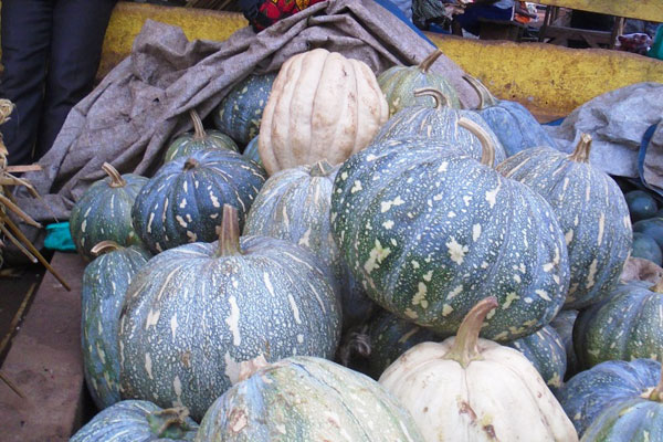 Farmers' Guide With Joseph Mugenyi: Earning Shs13m  From An Acre Of Pumpkins
