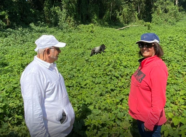 Tycoon Sudhir, Wife Joystna Go Gorilla Tracking In Bwindi Forest
