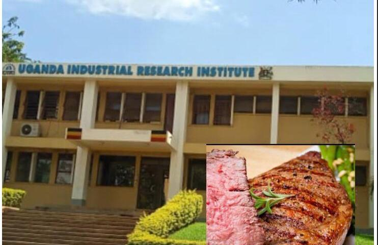 Exclusive: Uganda Industrial Research Institute Serves Market With Human Hand Instead Of Minced Meat, Closes Business!