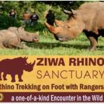 28 Arrested For Vandalizing Ziwa Rhino Sanctuary Amidst Land Disputes
