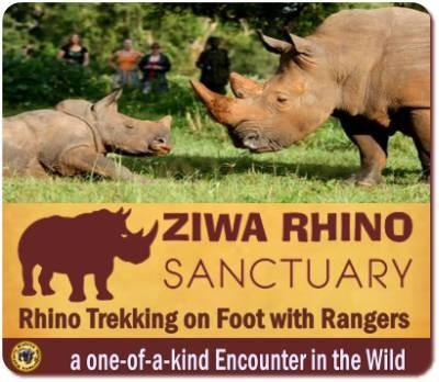 Zziwa Rhino Sanctuary Closure: Here's The Truth, And Nothing But The Truth: 'Mafia' Want The Land To Grow Sugar Canes