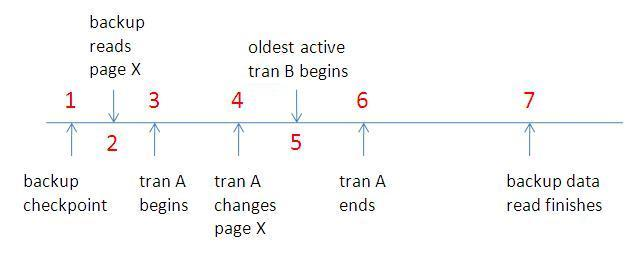 timeline More on how much transaction log a full backup includes