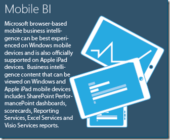 Business Intelligence Mobile BI