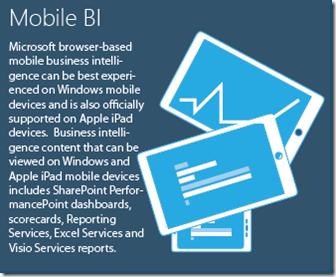 Business Intelligence Mobile BI