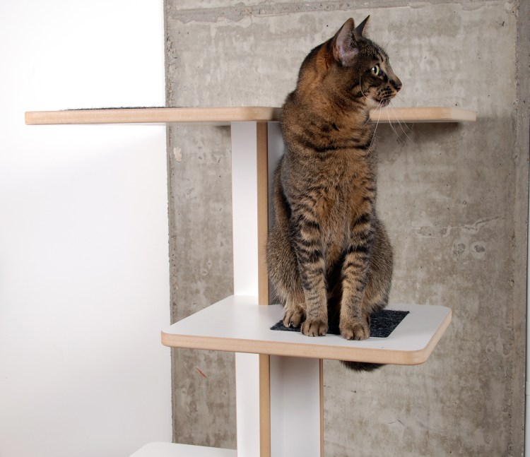 Cat on white Baolab Tower from upper front view