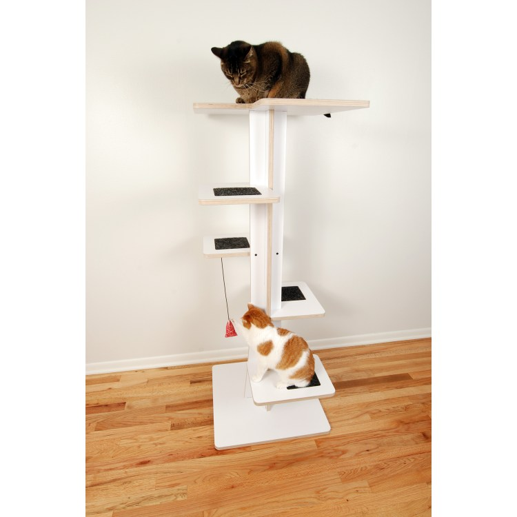 Cats playing on modern Baobab Tower with Catnip Toy