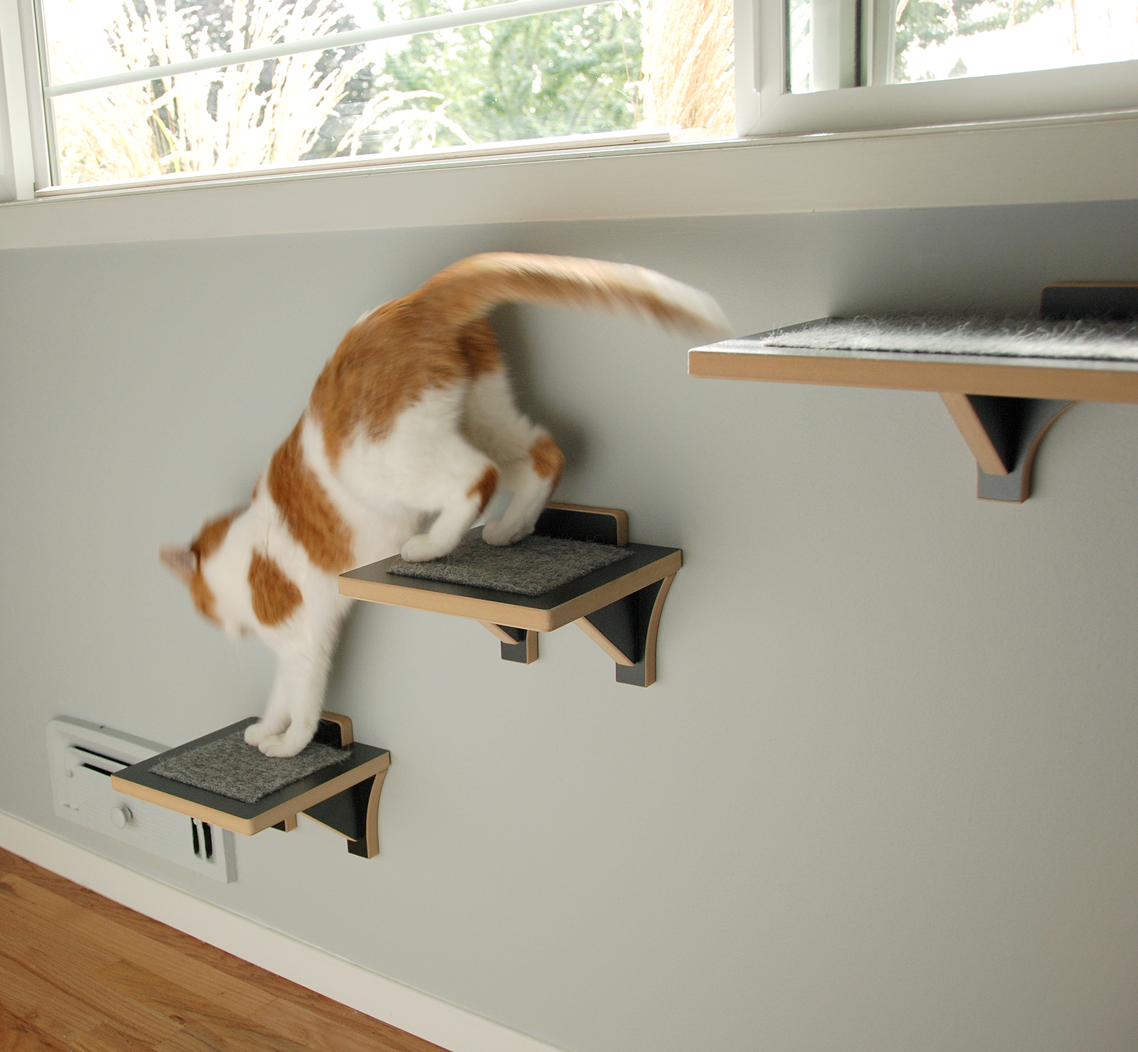 Hawthorne Cat Climbing Shelf Cat Stairs For Wall
