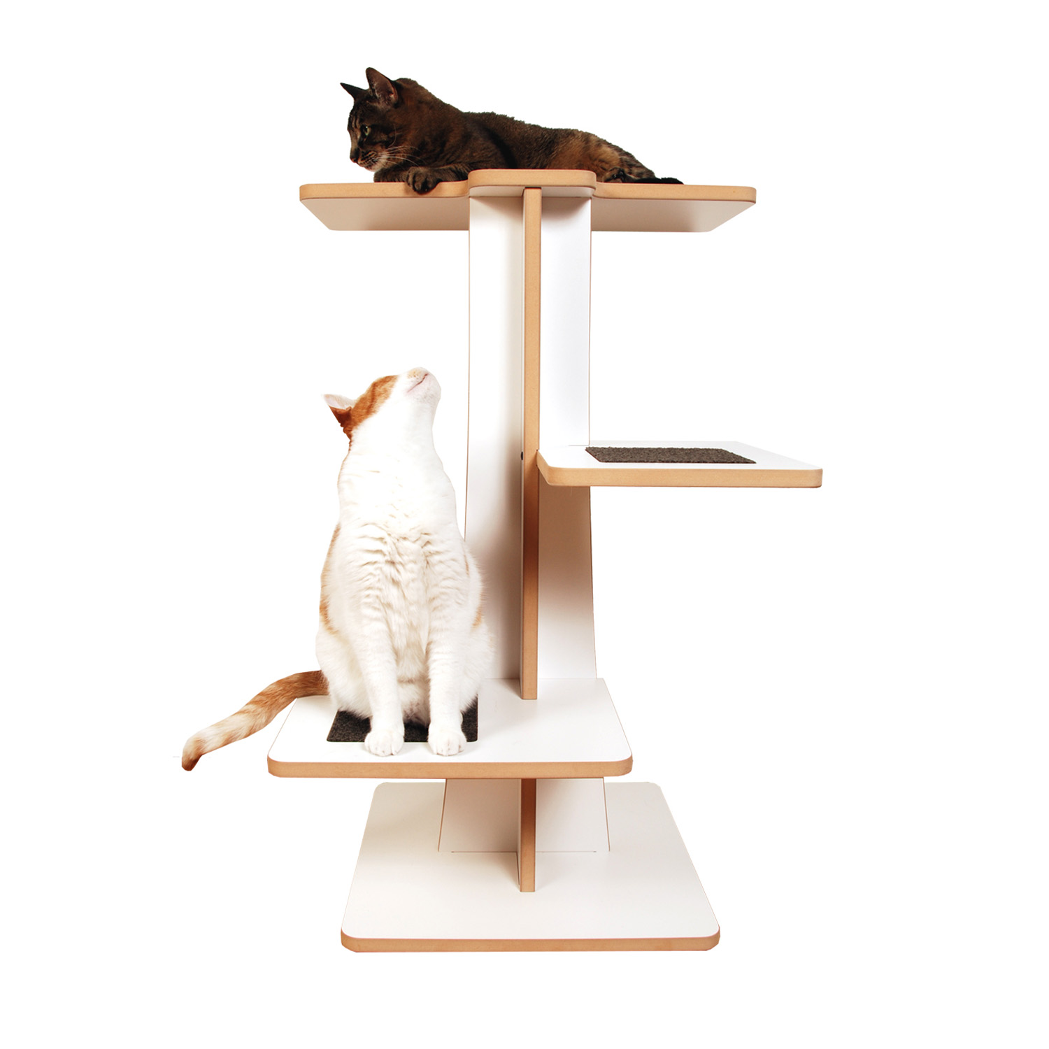 Modern Cat Tree 3 Tall Acacia Tower Square Cat Habitat