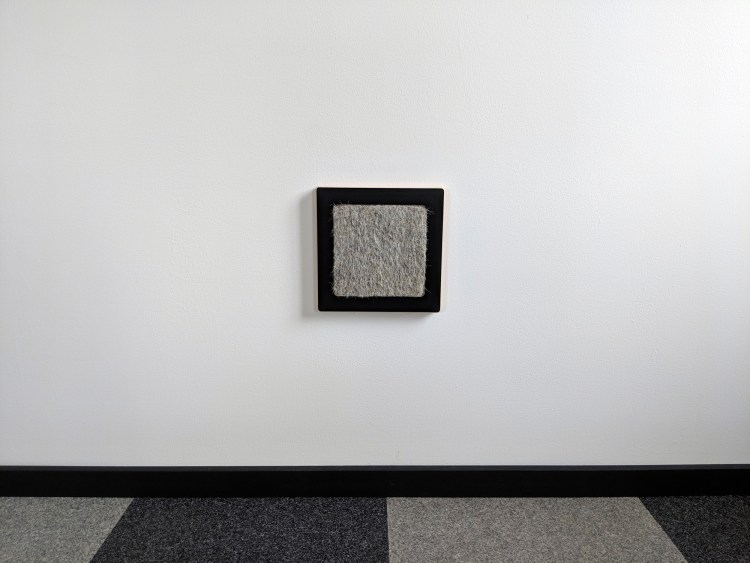 Modern wall cat scratcher in black SDF and hamster