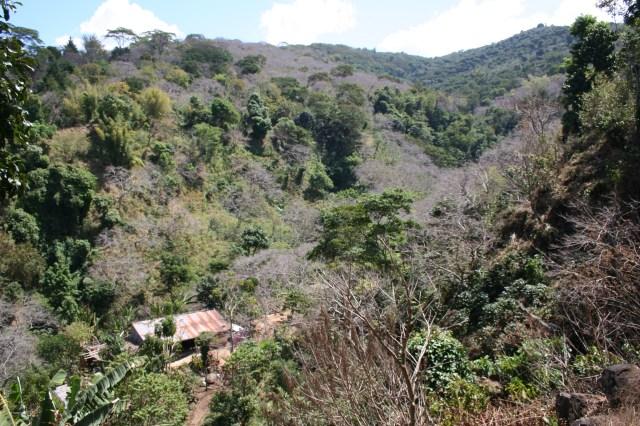 Finca Tanzania