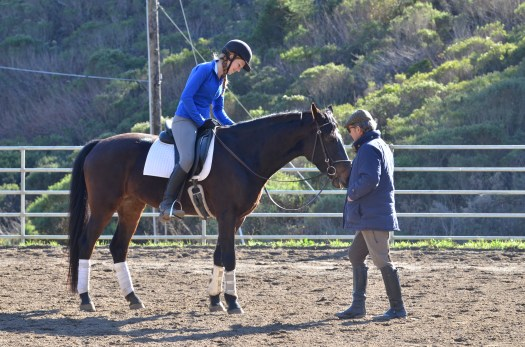 Kemma, Eve and Christian Bachinger of the Spanish Riding School
