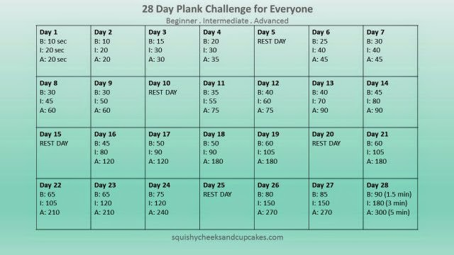 picture about 30 Day Plank Challenge Printable referred to as Regular Health and fitness Concern - 28 Working day Plank Trouble - Squishy