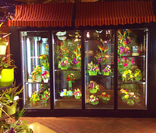 Long Door Floral Units  Commercial Refrigeration