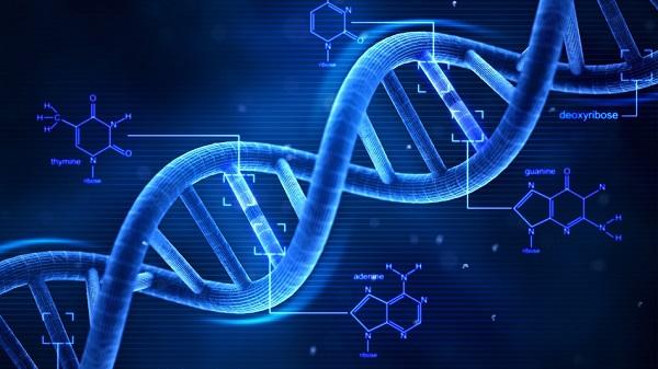 Za loše rezultate na ispitima slobodno okrivite roditelje: Uspjeh u obrazovanju baziran je na genima
