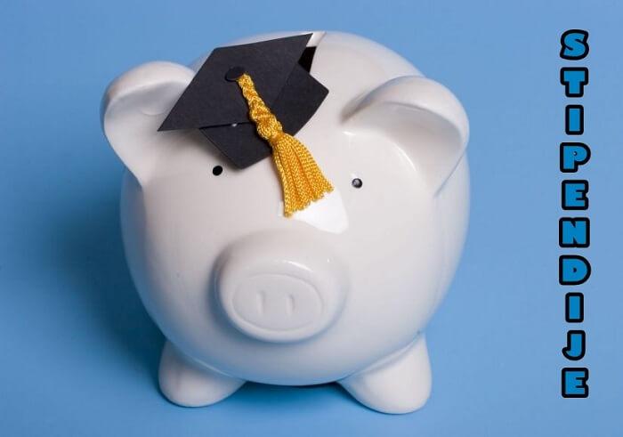 Provjerite ponudu studentskih stipendija na početku nove godine