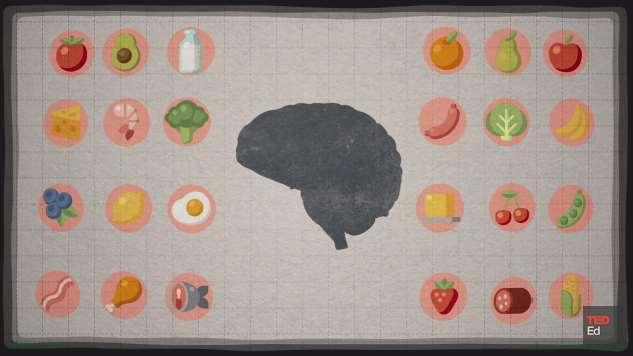 [VIDEO] Kako hrana koju jedemo utječe na naš mozak?