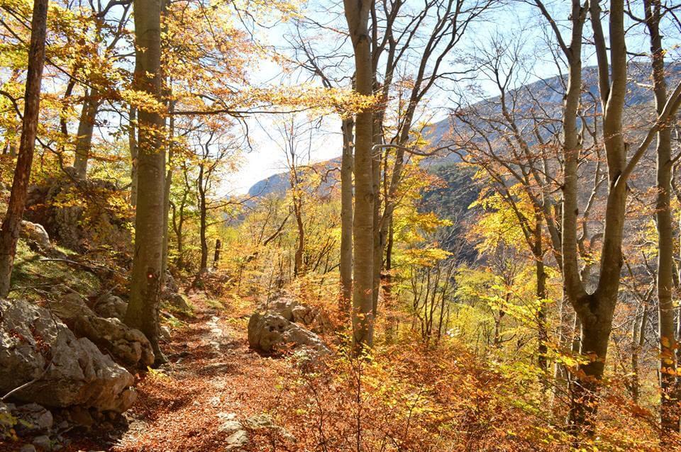 Nacionalni park Paklenica slavi rođendan i daruje besplatan ulaz svim posjetiteljima
