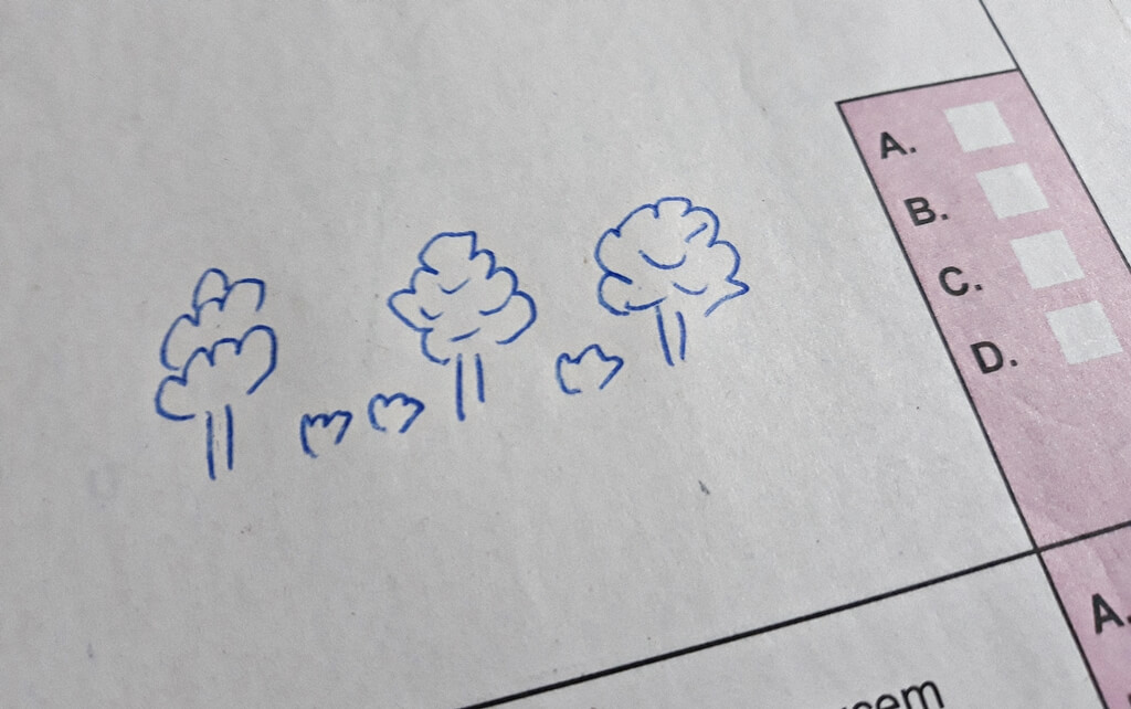 Na B razini ispita Matematike maturanti crtali stabla: 'Osjećam se užasno i očekujem jesenski rok'