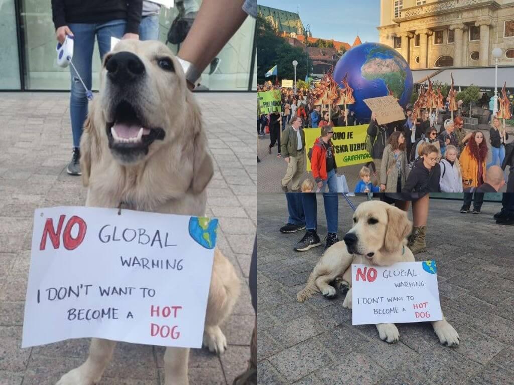 [Fotogalerija] Na učenički prosvjed za klimu u Zagrebu došao i pas te poručio: 'Ne želim biti hot dog'
