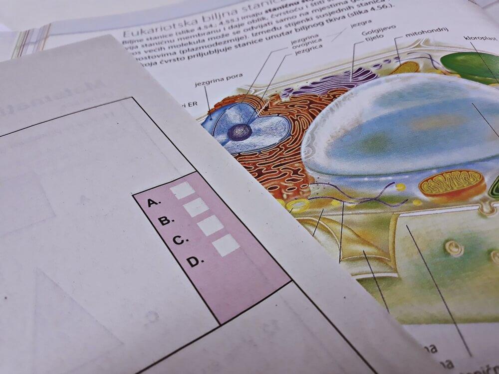 matura biologija