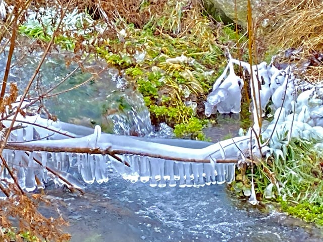 Icy branch over a river