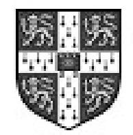 Programa Cambridge English Schools (CES)