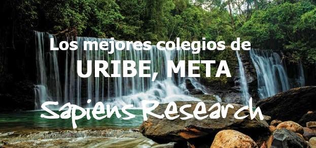 Los mejores colegios de Uribe, Meta