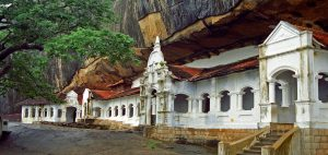 Dambulla sri lanka day tour