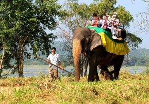 habarana safari