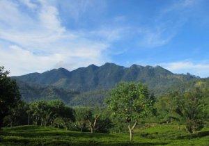 Mountain Sri Lanka