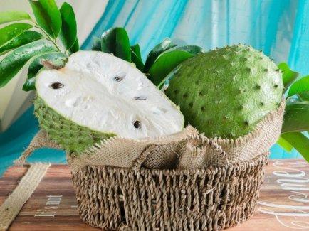 Soursop Tropical fruit