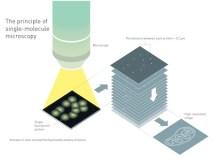 Microscope Nobel Prize