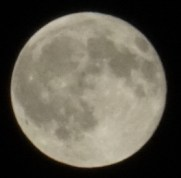 luna paolo centofanti
