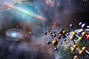 caso finalismo creazione evoluzione