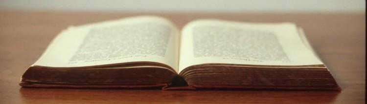 cropped-libro.jpg