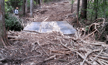 Stream Crossings And Water Quality – CompassLive