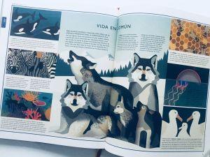 libros de ciencia para niños