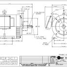 New Leeson electric motor Catalog B199965.00 20HP, 3600 RPM, 254JM Frame