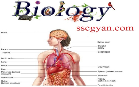Biology Notes in Hindi PDF for Ssc & Railway - sscgyan