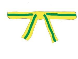 der 7 Kup: Gelb mit grünem Streifen